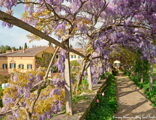 #lafoce #foce #toscana #tuscany #tourism #italy #itália